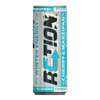ACTION Winter Energy pfandfrei 250 ml Dose